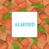 The square colored frame composed of almond nut. Vector card illustration. Nuts , almonds fruit in the shell, whole Royalty Free Stock Photography