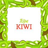 Square colored frame composed of delicious green kiwi fruit. Vector card illustration.  Royalty Free Stock Image