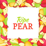 Square colored frame composed of delicious juicy pear fruit. Vector card illustration. Rectangle pears . Ripe fresh Royalty Free Stock Photo