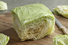 Square coolwrap cabbage leaves Royalty Free Stock Photography