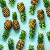 Square crop. Fresh pineapples on blue background. Top View. Pop art design, creative concept. Copy Space. Bright stock photography