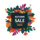 Square design banner with autumn sale logo. Discount card for fall season with white frame and herb. Promotion offer. With autumnal oak plant, maple leave and Royalty Free Stock Photo
