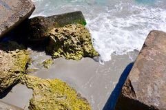 Square Ecology Blocks in Detail: Indian Ocean Stock Images