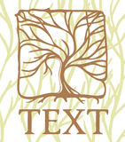 Square emblem tree. For text, sign Royalty Free Stock Images