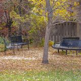 Square Empty benches at a park under lush trees with bright foliage in autumn. Sunlight beams down on the grassy ground covered with fallen leaves royalty free stock photography