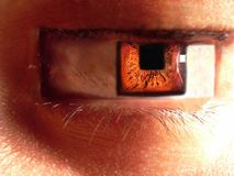 Square eye Royalty Free Stock Image