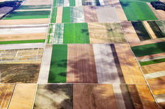 Square fields Royalty Free Stock Photos