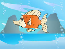 Square fish Royalty Free Stock Image