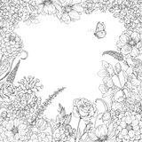 Square Floral frame  with flowers  and butterfly. Hand drawn square floral frame  with flowers  and butterfly. Black and white doodle flowers for coloring Stock Photography