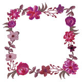 Square floral frame. Royalty Free Stock Photography