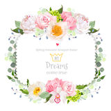 Square floral vector frame with peony, wild rose, carnation, orchid, eucaliptus and green leaves on white. Stock Photography
