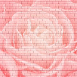 Square flower brick wall background Stock Photo