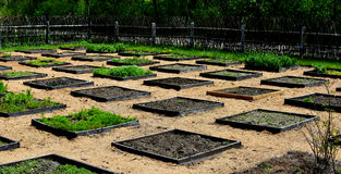 Square Foot Garden Plot. A square foot garden plot ready for planting in the spring Stock Photo