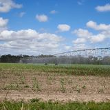 Square format irrigation device on parched field Royalty Free Stock Photo