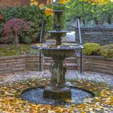 Square frame Beautiful tiered fountain on a garden with lush trees and plants in autumn. Golden fallen leaves surround the pool of water at the bottom of the stock image