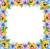 Square frame of blooming summer wild flowers of violets pansy with foliage. The middle is empty for text invitations to the stock illustration