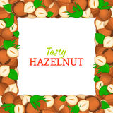 Square frame composed of delicious hazelnut nut. Vector card illustration. Nuts , walnut fruit in the shell, whole Stock Photo