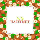 Square frame composed of delicious hazelnut nut. Vector card illustration. Nuts , walnut fruit in the shell, whole Royalty Free Stock Photos