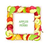 Square frame composed of delicious pear apple fruit. Vector card illustration. Rectangle pears apples frame fruits for. Packaging design food, juice, jam, ice Royalty Free Stock Photos