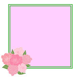A square frame decorated with a bouquet of roses with leaves with space for text. Tenderness, wedding Stock Images