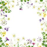 Square frame of flowers vector illustration