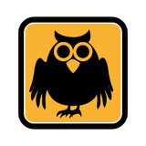 Square frame of halloween with owl Royalty Free Stock Image