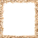 A square frame made from sunflower seeds. On a white background Royalty Free Stock Photography