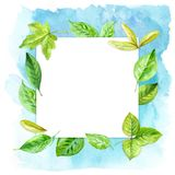 Square frame made of various leaves in watercolor On a blue background. Hand-painted design elements. Stock Photo