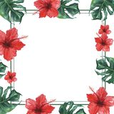 Square frame with monstera leaves and hibiscus flowers. Watercolor illustration. vector illustration