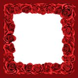 Frame of red blossom rose flowers for greeting card, wedding or Valentines day. stock illustration