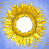 The square frame with sunflowers Stock Image