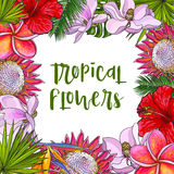 Square frame of tropical flowers and palm leaves Royalty Free Stock Image