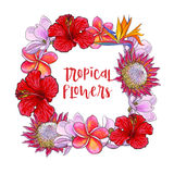 Square frame of tropical flowers and palm leaves Stock Photography