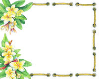 Square frame with  tropical resort flowers frangipani plumeria. Hand drawn watercolor painting on white background Royalty Free Stock Images
