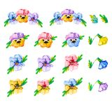 Square frame of watercolor blooming tricolor violet viola pansy flowers on a white background with copy space for text in the stock illustration