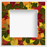 Square frame with yellow autumn leaves Stock Photo