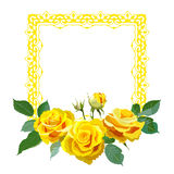 Square frame with yellow realistic roses. Stock Photography