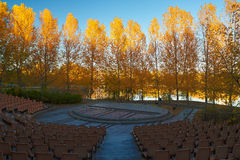 The square and golden trees Stock Photography