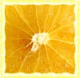 Square grapefruit. A digital grapefruit royalty free stock images