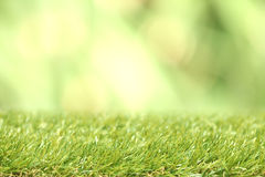 Square of green grass field Stock Photography