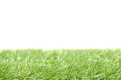 Square of green grass field Stock Photo