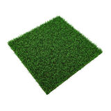 Square of green grass field on white. 3D illustration. Square of green grass field on white background. 3D illustration Royalty Free Stock Photos