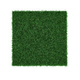 Square of green grass field on white. 3D illustration. Square of green grass field on white background. 3D illustration Royalty Free Stock Image