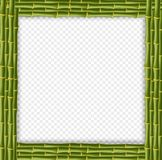 Square green wooden border made of realistic bamboo stems vector illustration