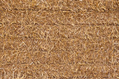 Square hay bale - closeup Royalty Free Stock Image