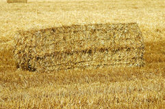 Square hay bale Stock Photography