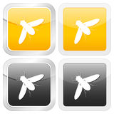 Square icon insect Royalty Free Stock Images