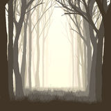 Square illustration glade in forest. Stock Images
