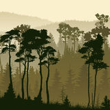 Square illustration of misty forest hills. Stock Photo