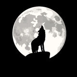 Square illustration of wolf howling at moon. Stock Images
